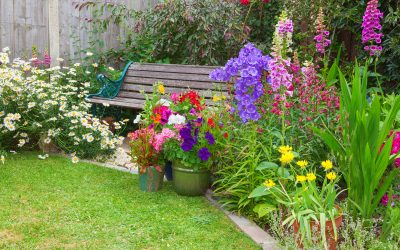 Plant a story garden, and you will never struggle for a story again